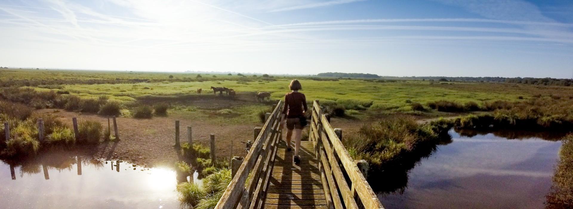 S'engager dans une démarche durable - Office de Tourisme intercommunal La Baule Guérande