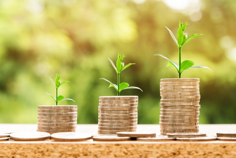®nattanan-money-pixabay