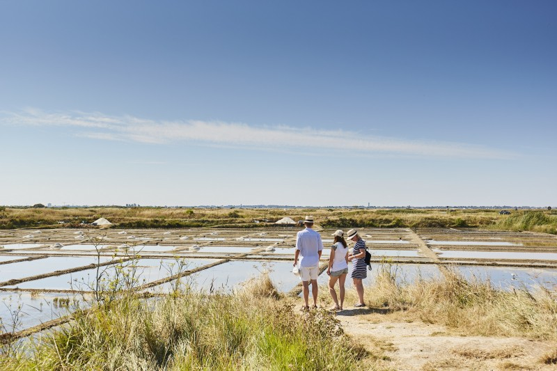 Guérande visite des marais - Alexandre Lamoureux
