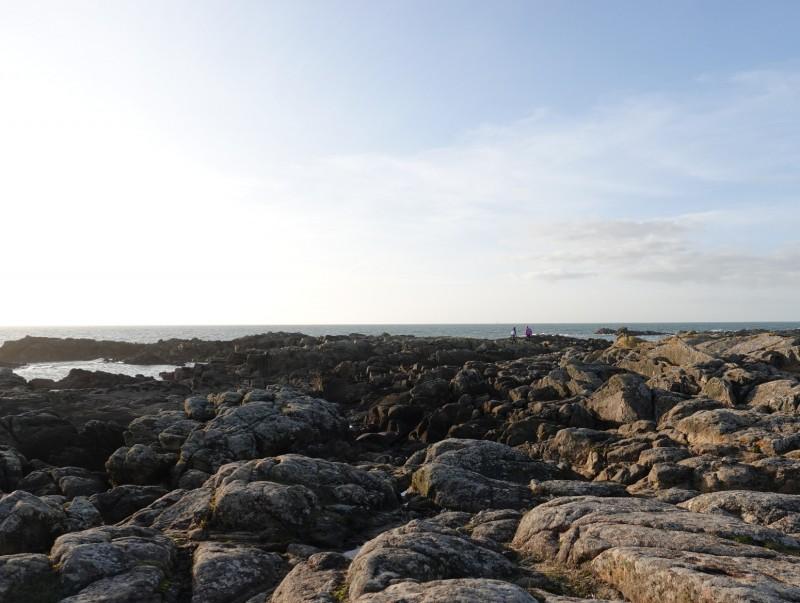 Quoi de neuf dans nos services - Février 2021 - campagne la mer en hiver